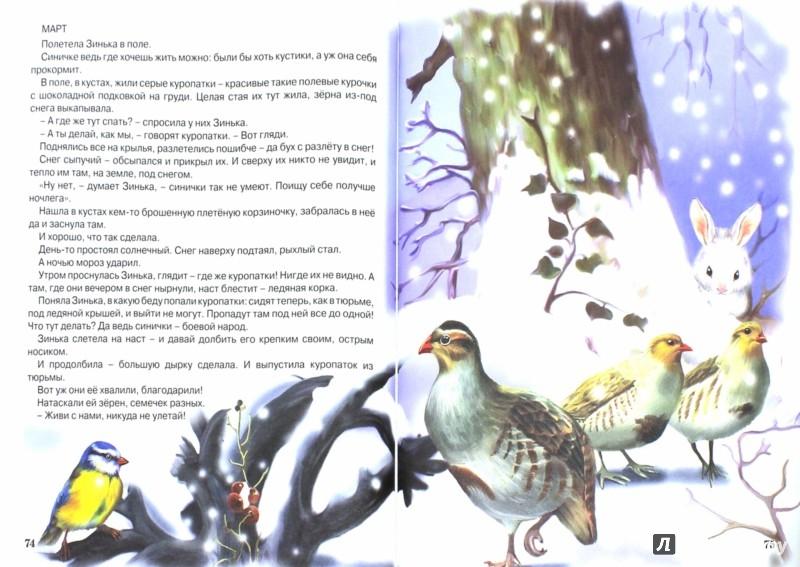 Иллюстрация 1 из 23 для Сказки малышам - Виталий Бианки | Лабиринт - книги. Источник: Лабиринт