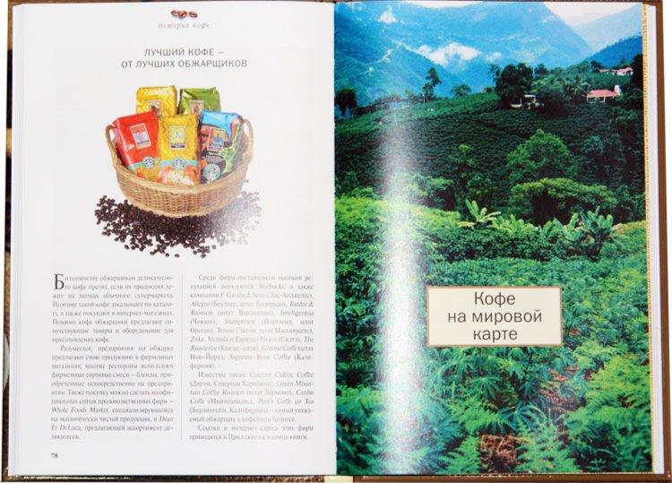 Иллюстрация 1 из 3 для Кофе. Советы знатока - Торн, Сегал | Лабиринт - книги. Источник: Лабиринт