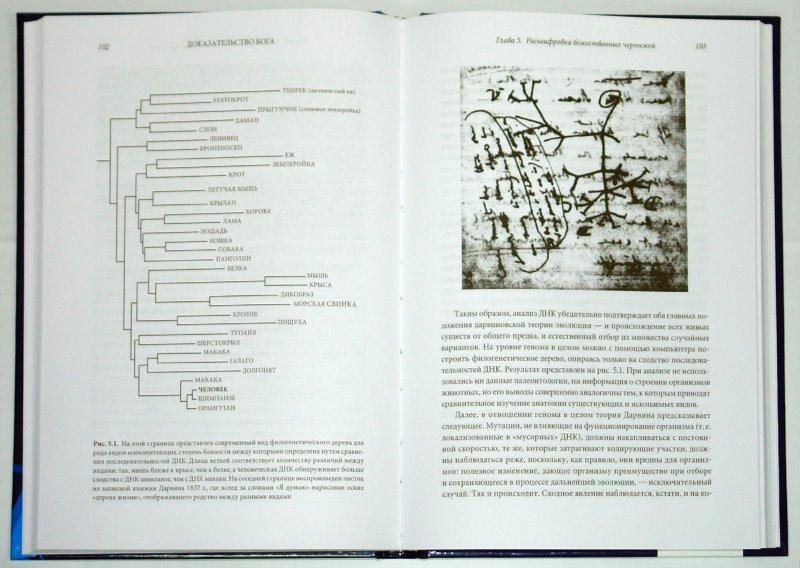 Иллюстрация 1 из 13 для Доказательство Бога: Аргументы ученого - Фрэнсис Коллинз   Лабиринт - книги. Источник: Лабиринт