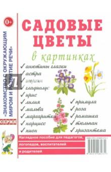 Садовые цветы в картинках. Наглядное пособие для педагогов, логопедов, воспитателей и родителей