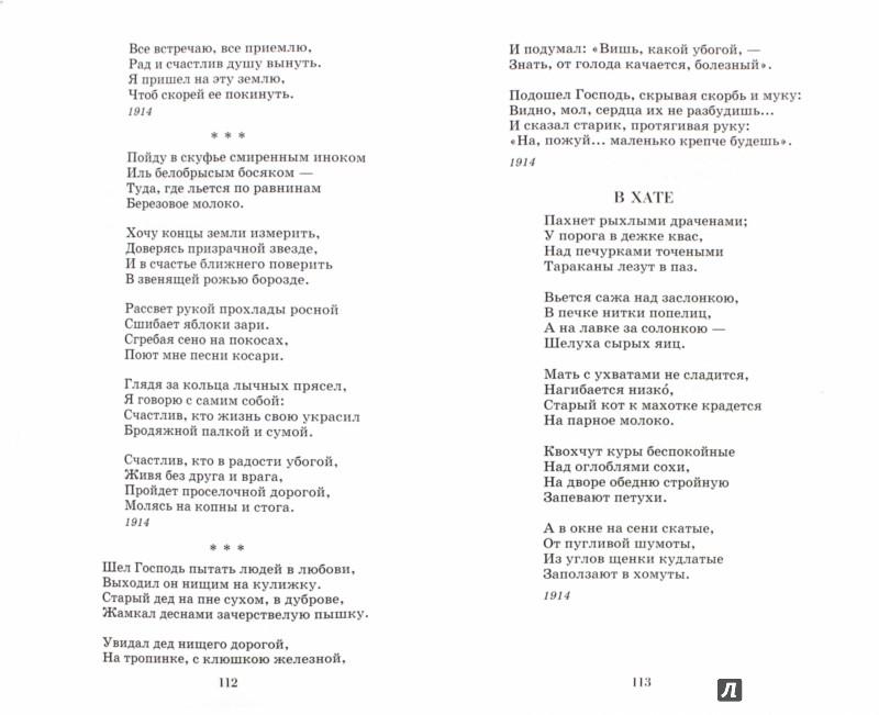 Иллюстрация 1 из 6 для Стихотворения. Поэмы - Сергей Есенин   Лабиринт - книги. Источник: Лабиринт