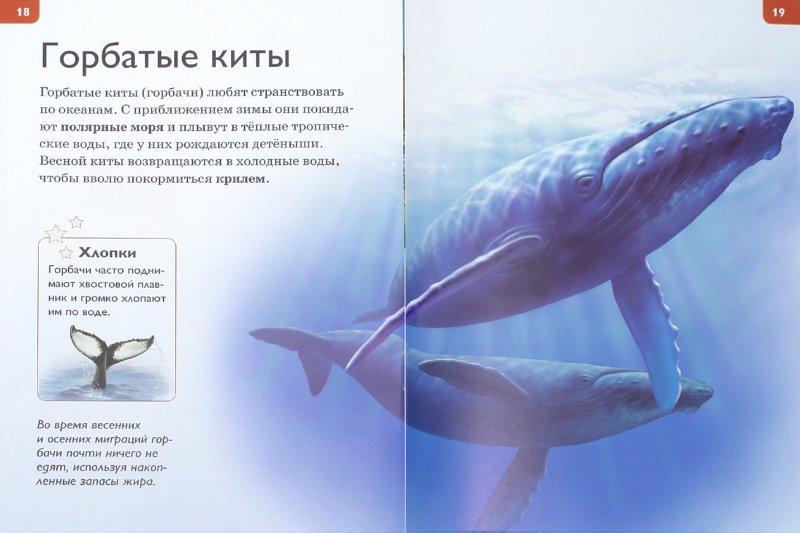 Иллюстрация 1 из 21 для Миграции животных - Роберт Коуп | Лабиринт - книги. Источник: Лабиринт