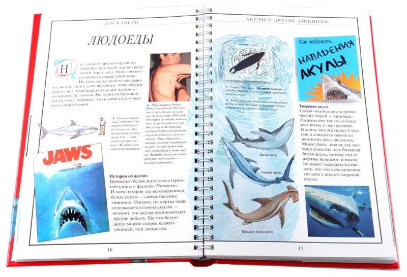 Иллюстрация 1 из 14 для Дискавери: Акулы и другие хищники - Джон Вудвард | Лабиринт - книги. Источник: Лабиринт