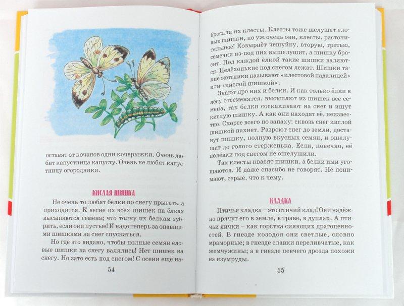 Иллюстрация 1 из 16 для Лесные шорохи - Николай Сладков | Лабиринт - книги. Источник: Лабиринт