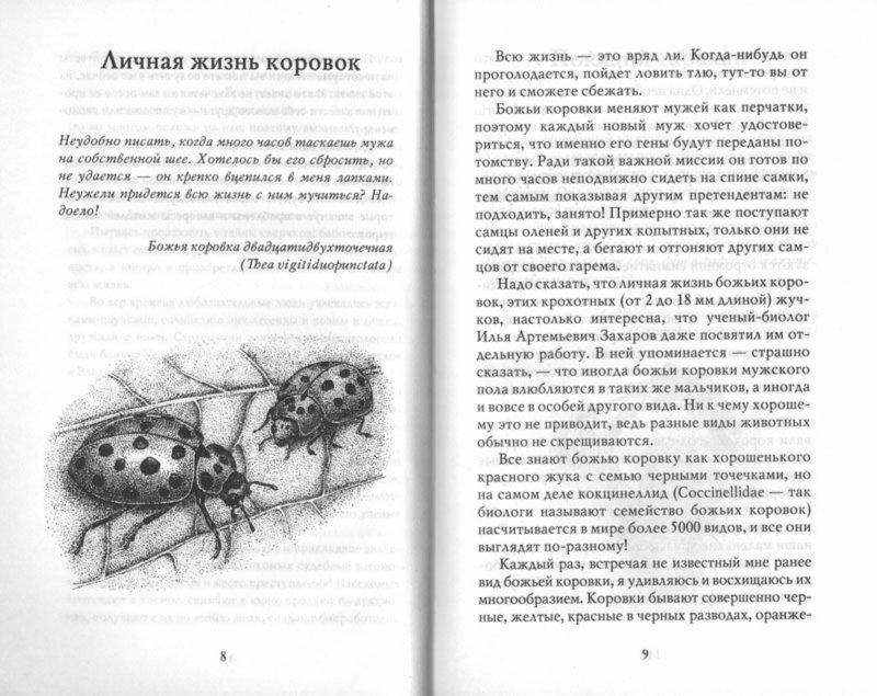 Иллюстрация 1 из 35 для Письма насекомых - Ольга Кувыкина   Лабиринт - книги. Источник: Лабиринт