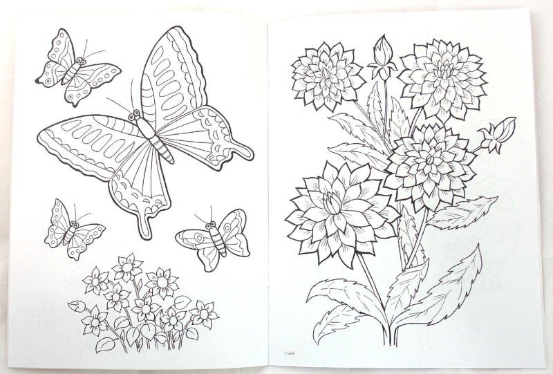 Иллюстрация 1 из 17 для Цветы и бабочки - Т. Коваль | Лабиринт - книги. Источник: Лабиринт
