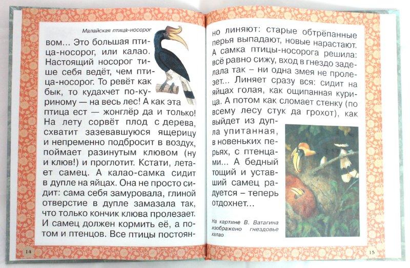 Иллюстрация 1 из 21 для Гнезда, норки, домики - Инна Гамазкова   Лабиринт - книги. Источник: Лабиринт