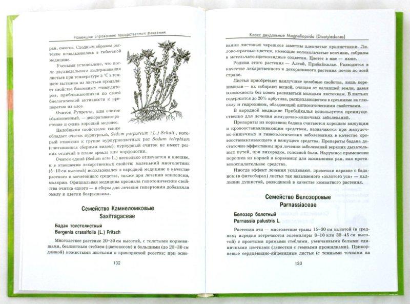 Иллюстрация 1 из 6 для Новейший справочник лекарственных растений - Андрей Рябоконь | Лабиринт - книги. Источник: Лабиринт