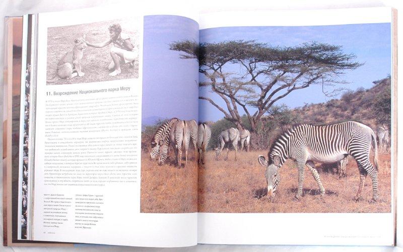 Иллюстрация 1 из 21 для Самые красивые места дикой природы в мире - Джеймс Пэрри | Лабиринт - книги. Источник: Лабиринт