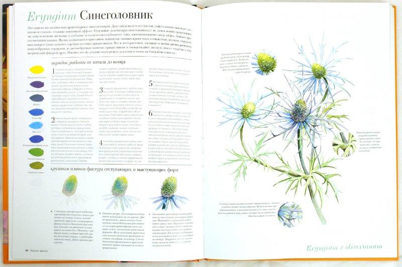 Рисуем цветы акварелью скачать книгу