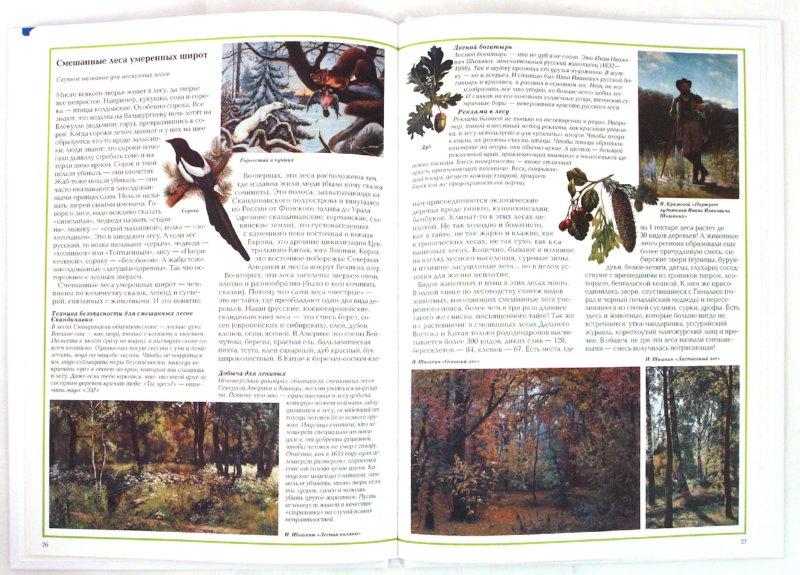 Иллюстрация 1 из 33 для Загадки леса - Светлана Лаврова | Лабиринт - книги. Источник: Лабиринт