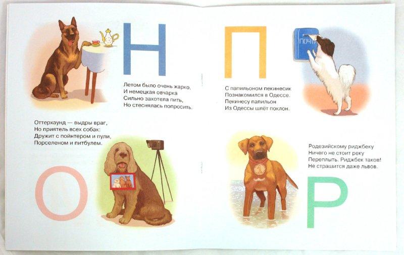 Иллюстрация 1 из 2 для Собаки. Азбука всего на свете - Кира Черкавская | Лабиринт - книги. Источник: Лабиринт