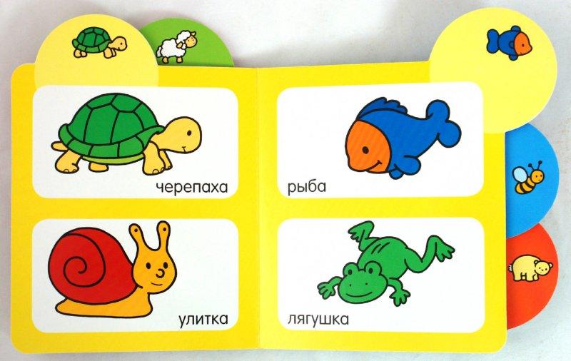 Иллюстрация 1 из 11 для Животные | Лабиринт - книги. Источник: Лабиринт
