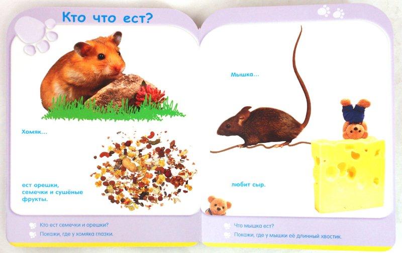 Иллюстрация 1 из 19 для Кто где живет? (18-24 мес.) | Лабиринт - книги. Источник: Лабиринт