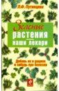 Путинцева Лидия Филипповна Зеленые растения - наши лекари чудаева и наши дачные лекари живые витамины овощные и дикорастущие растения