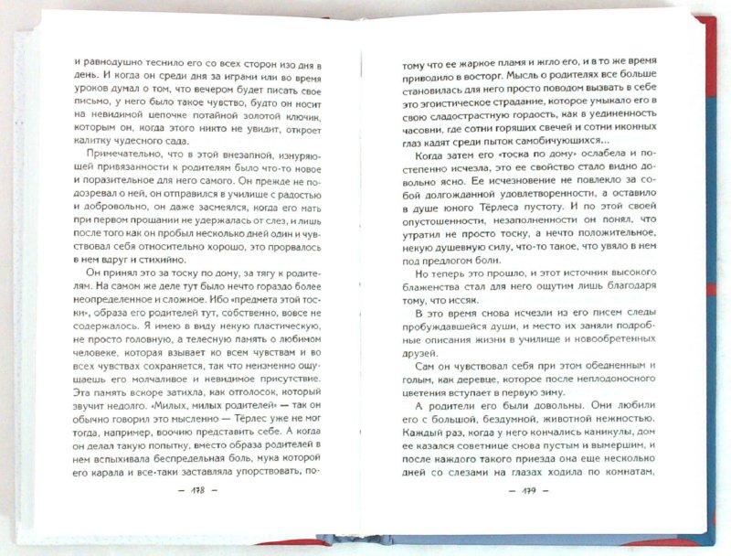 Иллюстрация 1 из 2 для Малая проза - Роберт Музиль | Лабиринт - книги. Источник: Лабиринт