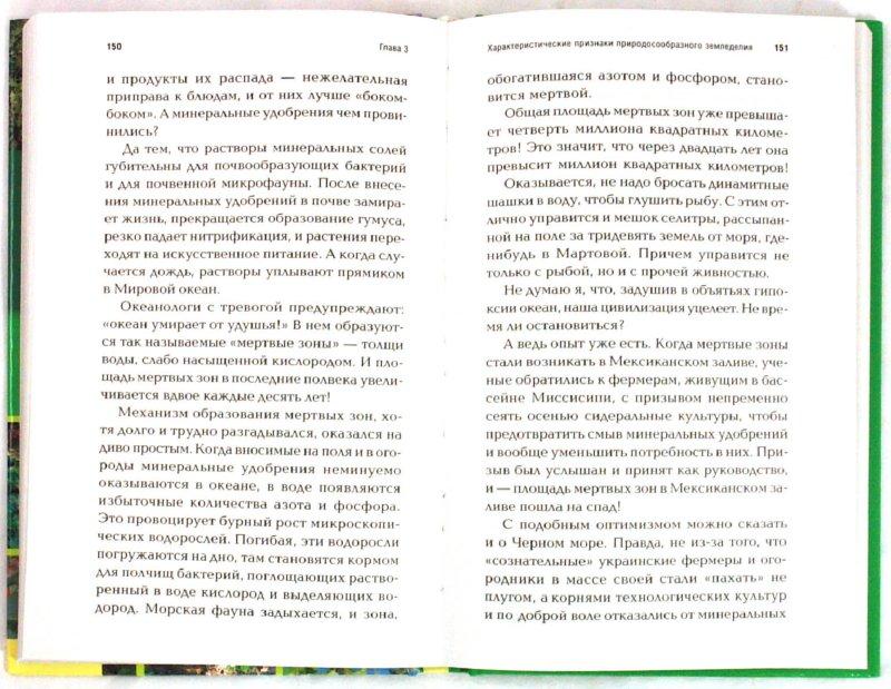 Иллюстрация 1 из 9 для Огород без хлопот. Полезные советы для начинающих и не только - Борис Бублик | Лабиринт - книги. Источник: Лабиринт