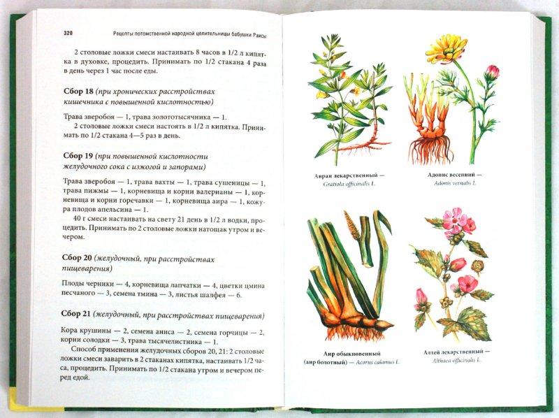 Иллюстрация 1 из 17 для Травник | Лабиринт - книги. Источник: Лабиринт