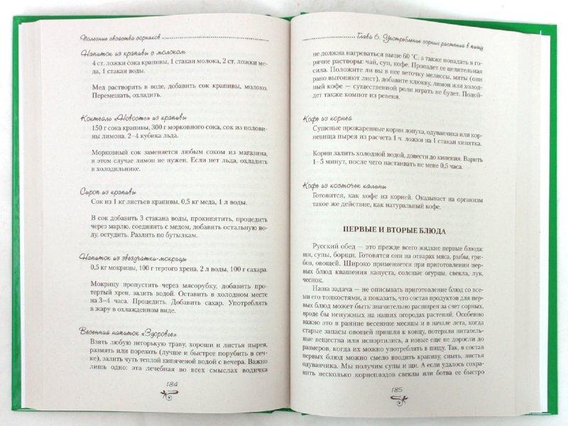Иллюстрация 1 из 38 для Полезные свойства сорняков - Нелли Кислова | Лабиринт - книги. Источник: Лабиринт
