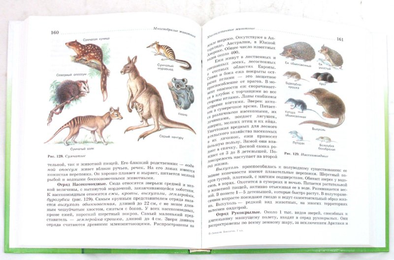 Иллюстрация 1 из 50 для Биология. Животные. 7 класс. Учебник - Латюшин, Шапкин | Лабиринт - книги. Источник: Лабиринт