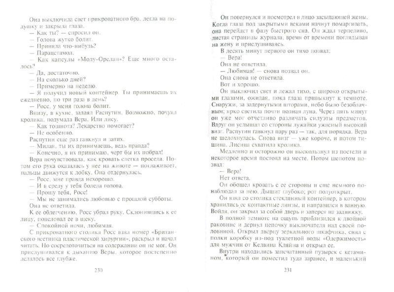 Иллюстрация 1 из 26 для Прыжок над пропастью - Питер Джеймс | Лабиринт - книги. Источник: Лабиринт