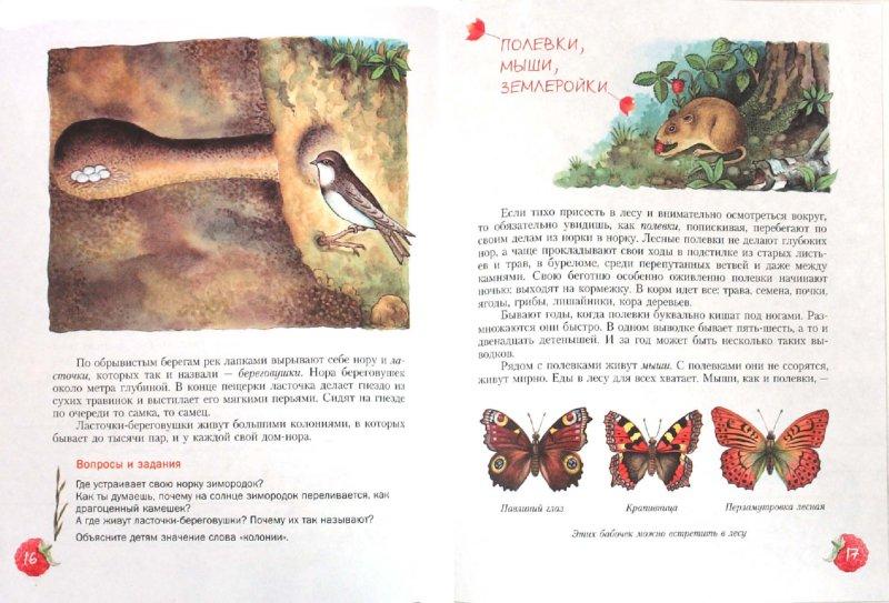 Иллюстрация 1 из 39 для Кто в лесной норе живет?: книга для чтения детям - Александр Тамбиев   Лабиринт - книги. Источник: Лабиринт