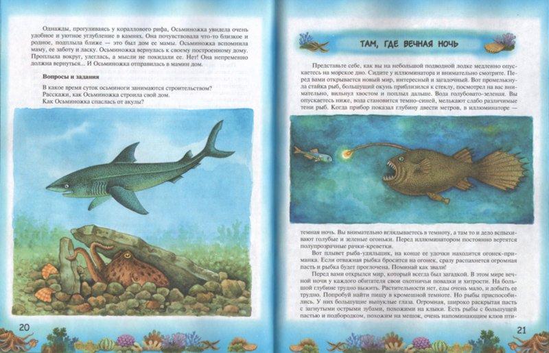 Иллюстрация 1 из 17 для Приключения Осьминожки: книга для чтения детям - Геннадий Целищев   Лабиринт - книги. Источник: Лабиринт
