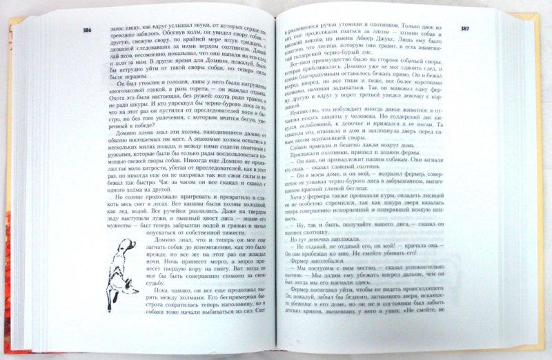 Иллюстрация 1 из 22 для Все о... Рассказы о животных - Эрнест Сетон-Томпсон | Лабиринт - книги. Источник: Лабиринт