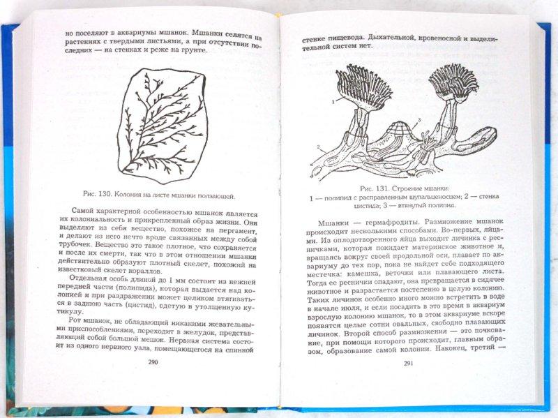 Иллюстрация 1 из 19 для 10000 советов аквариумисту - Николай Белов | Лабиринт - книги. Источник: Лабиринт