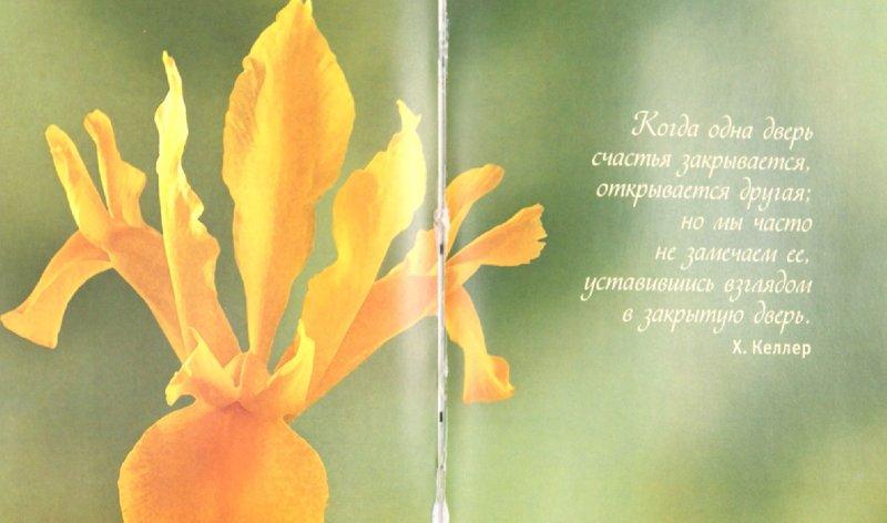 Иллюстрация 1 из 11 для Что такое счастье... | Лабиринт - книги. Источник: Лабиринт