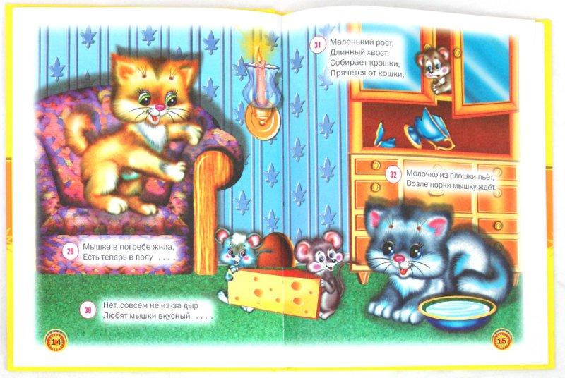 Иллюстрация 1 из 16 для Прочитай и отгадай - Владимир Степанов | Лабиринт - книги. Источник: Лабиринт