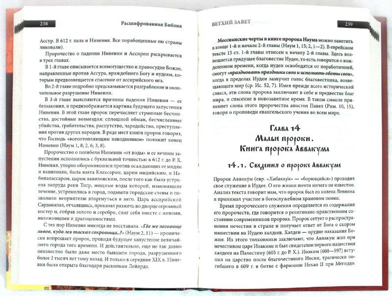 Иллюстрация 1 из 5 для Расшифрованная Библия - Михалицын, Нестеренко | Лабиринт - книги. Источник: Лабиринт