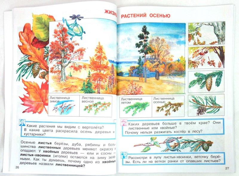 Иллюстрация 1 из 15 для Окружающий мир. 1 класс: Учебник - Федотова, Трафимова, Трафимов | Лабиринт - книги. Источник: Лабиринт