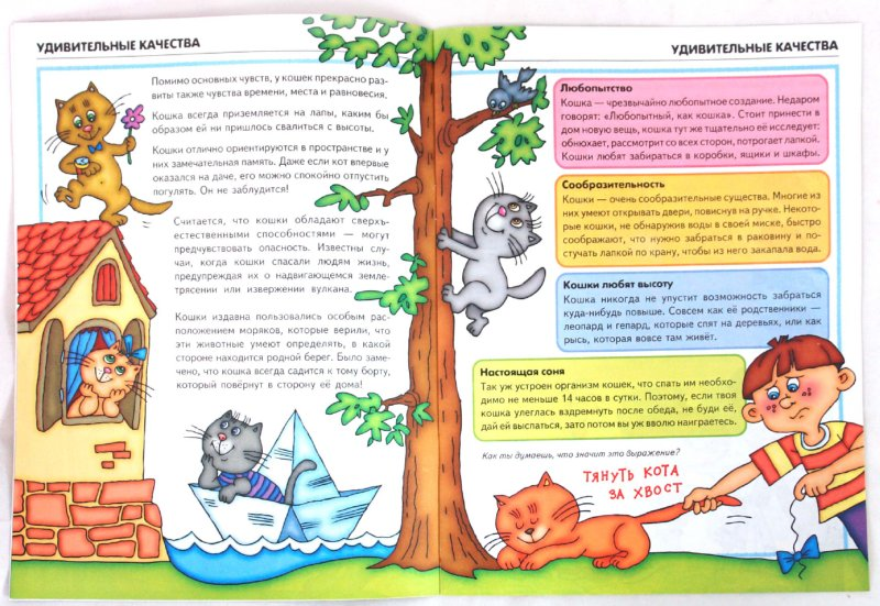 Иллюстрация 1 из 25 для Мама, хочу котенка! - Ольга Шапина | Лабиринт - книги. Источник: Лабиринт