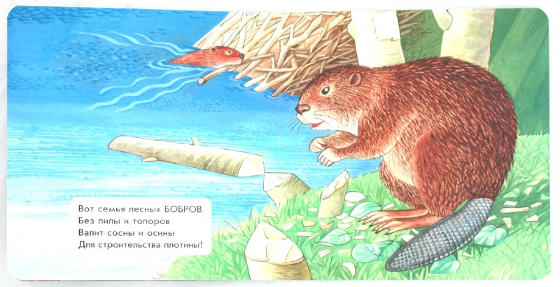 Иллюстрация 1 из 9 для Водоплавающие животные - Наталья Мамина | Лабиринт - книги. Источник: Лабиринт