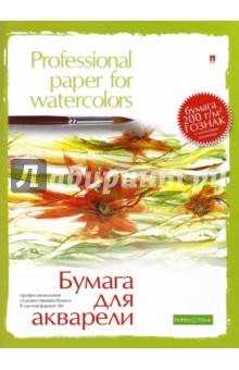 Папка для акварели (8 листов, А4) (4-006)
