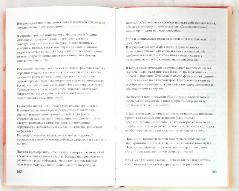 Иллюстрация 1 из 7 для Анатомия красоты - Дэвид Сил | Лабиринт - книги. Источник: Лабиринт