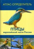 Птицы европейской части России. Атлас-определитель