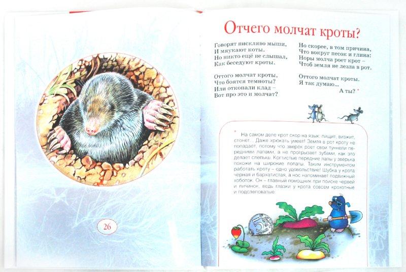 Иллюстрация 1 из 15 для На лесной полянке - Усачев, Тихонов | Лабиринт - книги. Источник: Лабиринт
