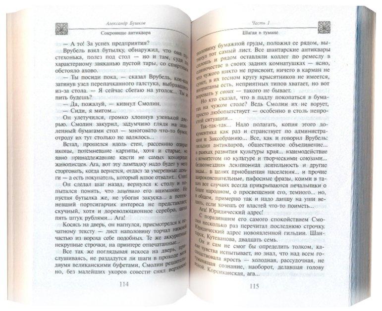 Иллюстрация 1 из 4 для Сокровище антиквара - Александр Бушков | Лабиринт - книги. Источник: Лабиринт