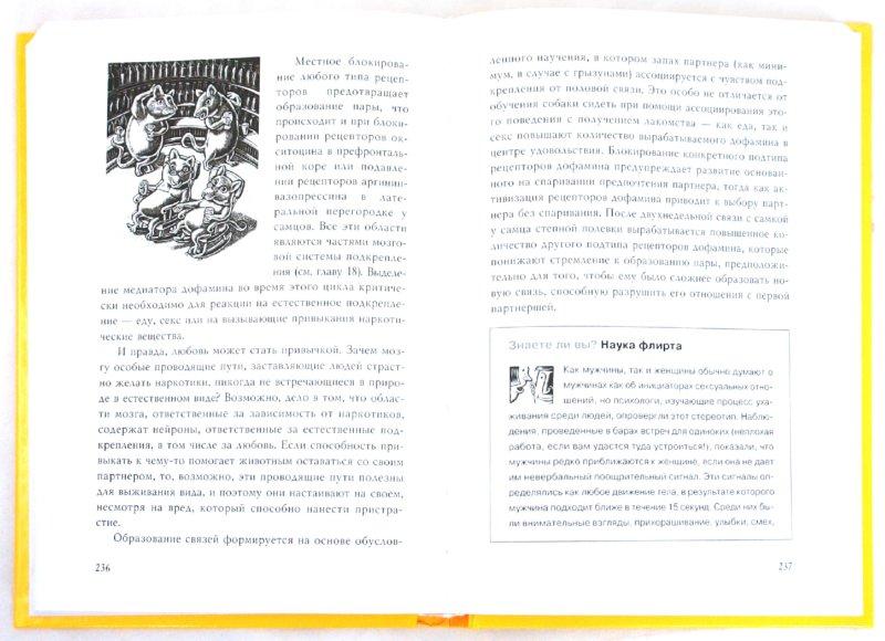 Иллюстрация 1 из 24 для Тайны нашего мозга, или Почему умные люди делают глупости - Амодт, Вонг   Лабиринт - книги. Источник: Лабиринт