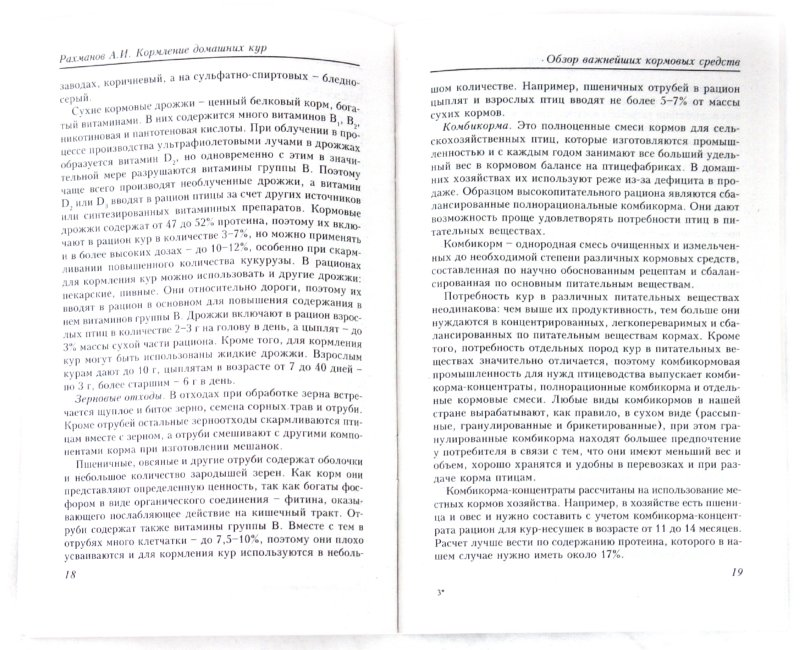 Иллюстрация 1 из 4 для Кормление домашних кур - Александр Рахманов | Лабиринт - книги. Источник: Лабиринт