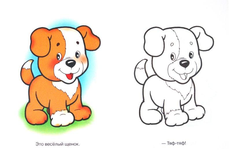 Иллюстрация 1 из 5 для Домашние животные. Кисонька-мурысенька | Лабиринт - книги. Источник: Лабиринт
