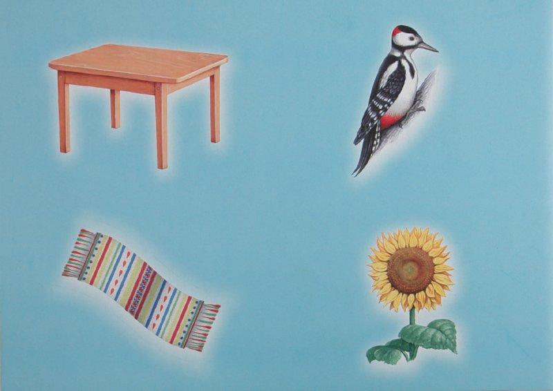 Иллюстрация 1 из 19 для Логопедические карточки №1 для обследования звукопроизношения детей и слогового состава слов - Н. Белавина | Лабиринт - книги. Источник: Лабиринт