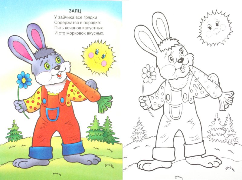 Иллюстрация 1 из 8 для Посмотри и раскрась: Лесные жители - Т. Коваль | Лабиринт - книги. Источник: Лабиринт