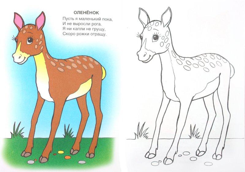 Иллюстрация 1 из 6 для Посмотри и раскрась: Ребятам о зверятах - Т. Коваль   Лабиринт - книги. Источник: Лабиринт