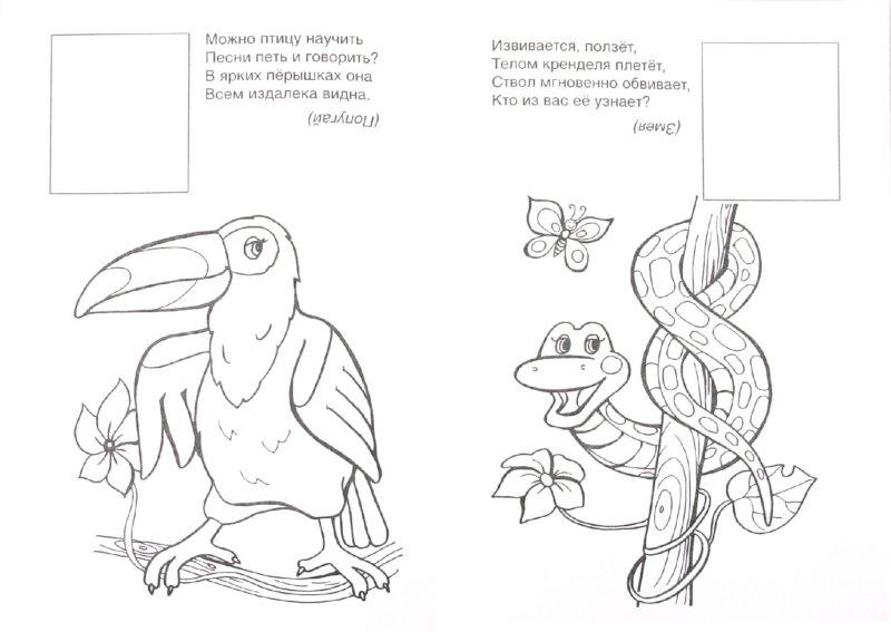 Иллюстрация 1 из 4 для Раскраска с наклейками: Что такое джунгли - Т. Коваль | Лабиринт - книги. Источник: Лабиринт
