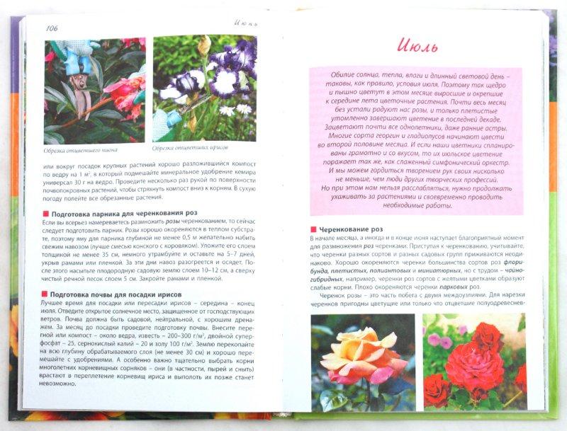 Иллюстрация 1 из 17 для Новый календарь цветовода - Луиза Китаева | Лабиринт - книги. Источник: Лабиринт