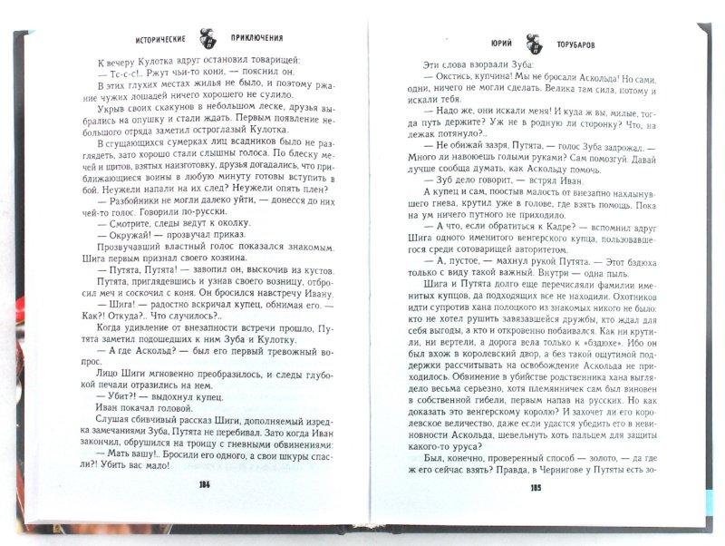Иллюстрация 1 из 6 для Месть Аскольда - Юрий Торубаров | Лабиринт - книги. Источник: Лабиринт