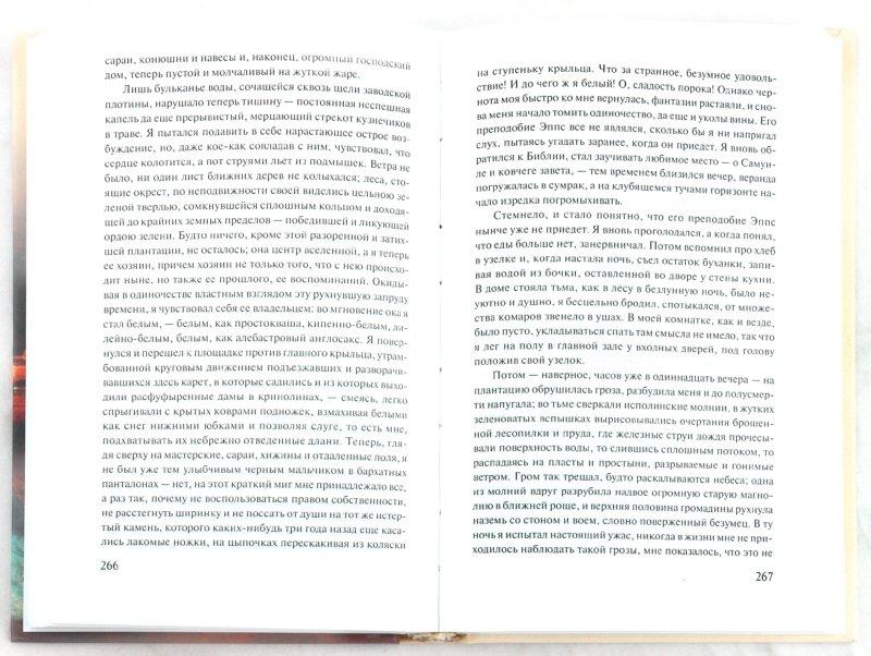Иллюстрация 1 из 23 для Признания Ната Тернера - Уильям Стайрон | Лабиринт - книги. Источник: Лабиринт